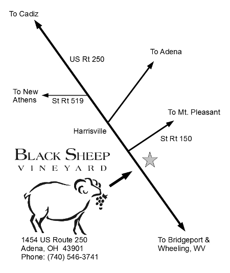 Black Sheep Vineyard Map