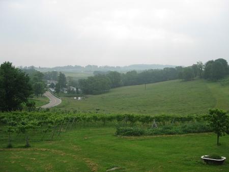 20090610-deckview1