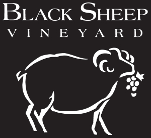 Black Sheep Vineyard Logo